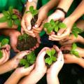 Plano de mitigação de impactos ambientais